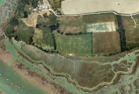 The former salt making landscape of Exbury Farm and Stephen Turner's 'personal parish'.