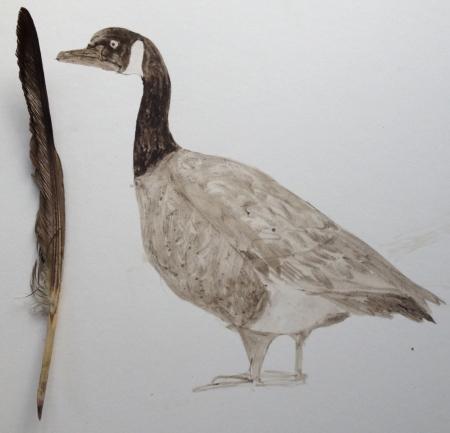 goose&quill